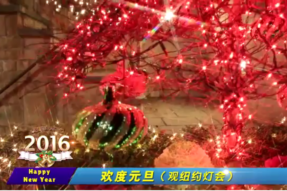 [Video] 2016 New Year Lights Show