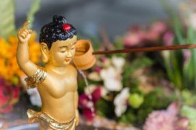 DAMI Members Celebrate Buddha's Birthday