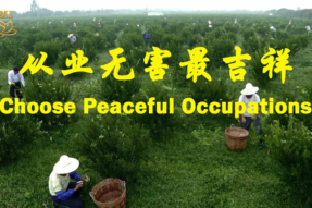 [Video Story] Choose Peaceful Occupations